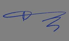 ნათია გოცაძე ხელმოწერა